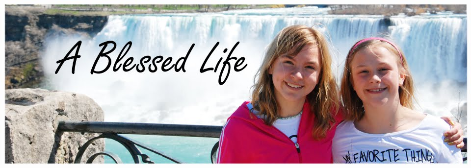 A Blessed Life-everyday life with Lisa Dorsey