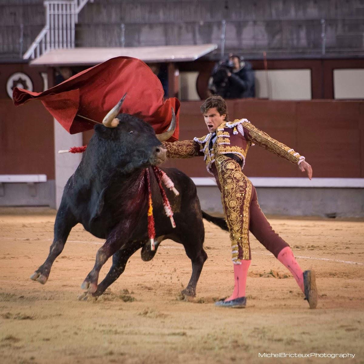 Día de Toros : Eduardo Gallo - Las Ventas, 24/03/2013