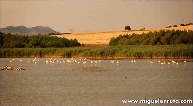 Laguna-de-Horna-Albacete