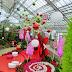 Noël bonbon au Jardin botanique