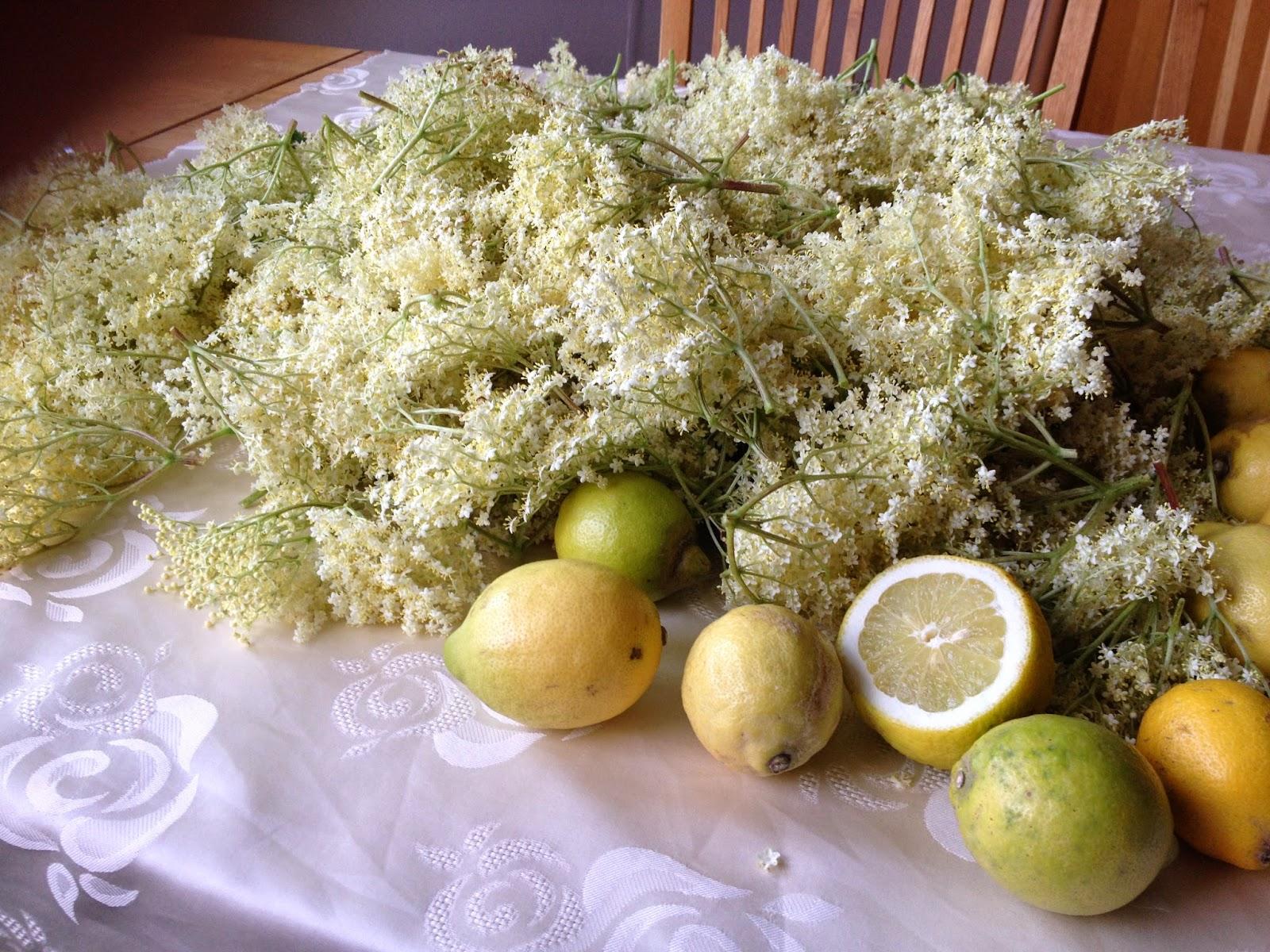 fläderblomssaft utan citronsyra