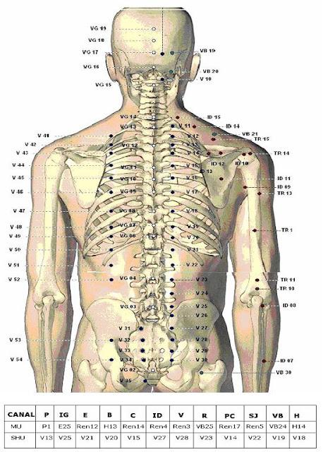 http://www.galeron.org/curso-lectura-clasica-del-pulso-en-acupuntura-c2x19449045