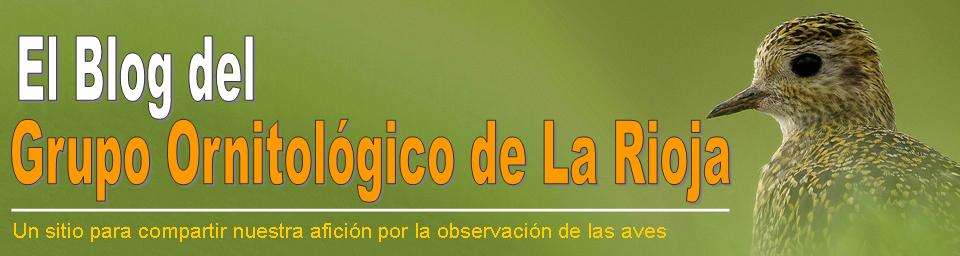 El Blog del Grupo Ornitológico de La Rioja