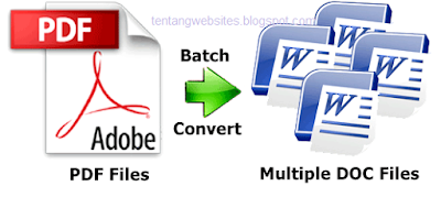 convert file pdf to doc ms word
