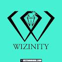 Wizinity Graphic Logo Design