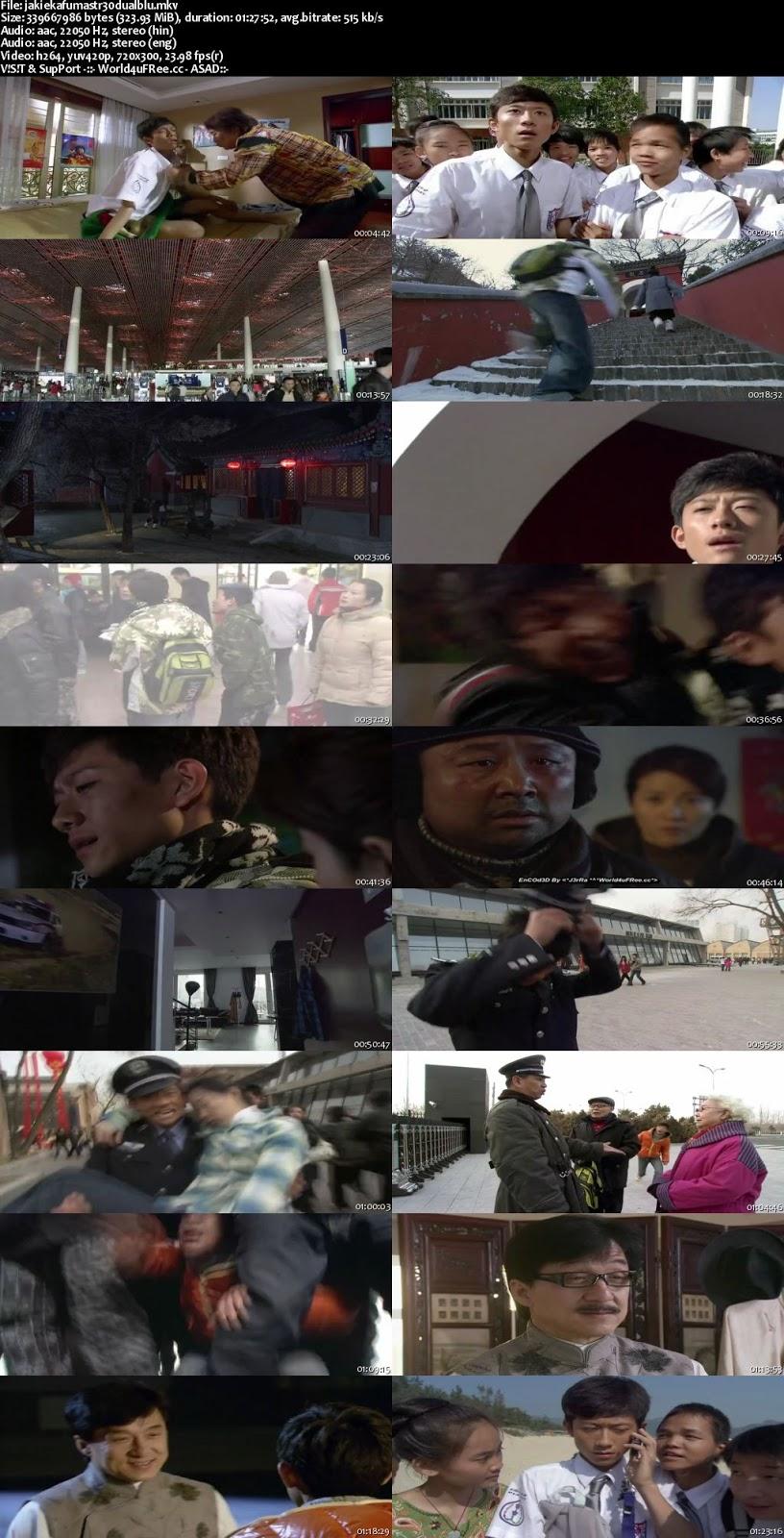 Jackie Chan Kung Fu Master 2009 BRRip Dual Audio 480p 300mb