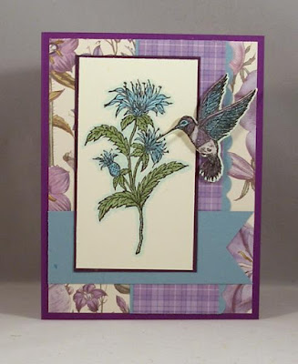 Our Daily Bread Designs, Bee Balm, Hummingbird