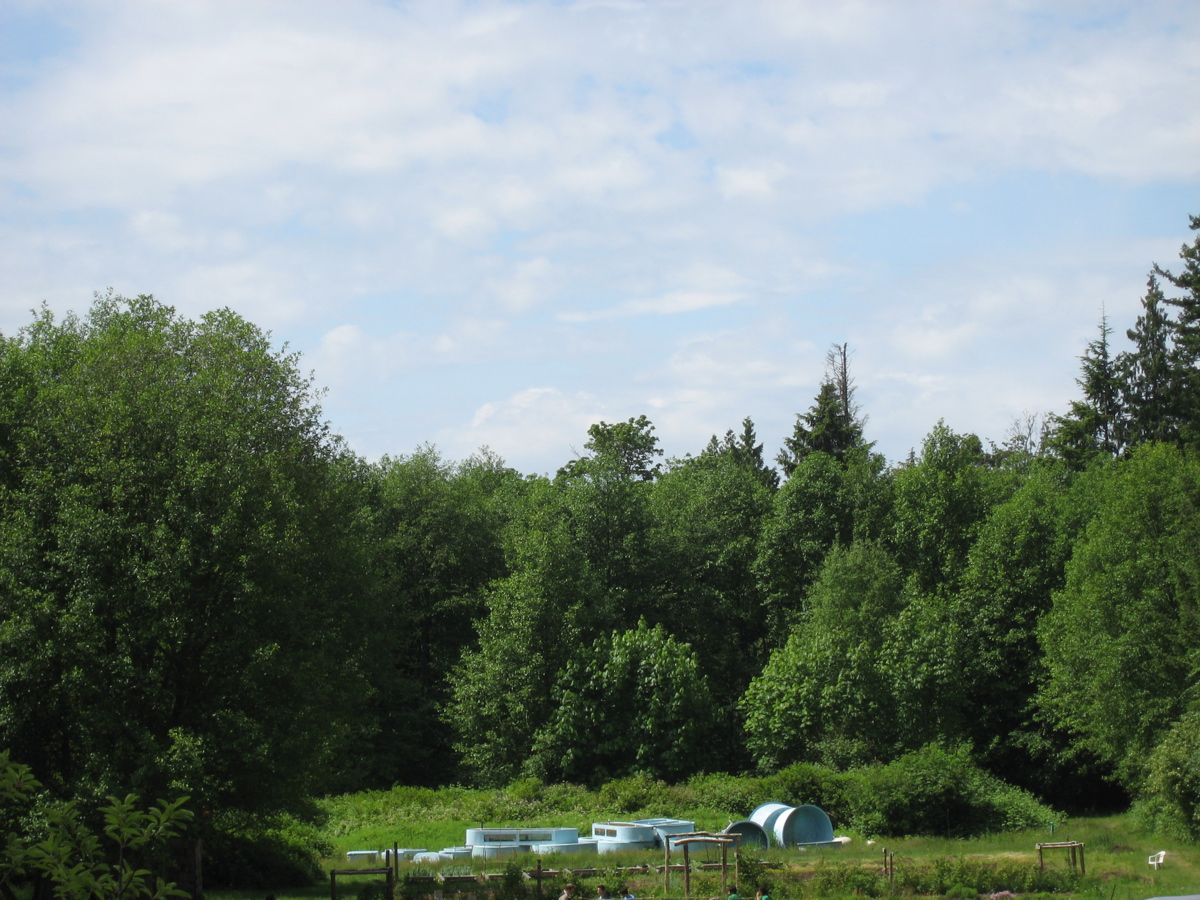 The farm is mostly surrounded by trees.