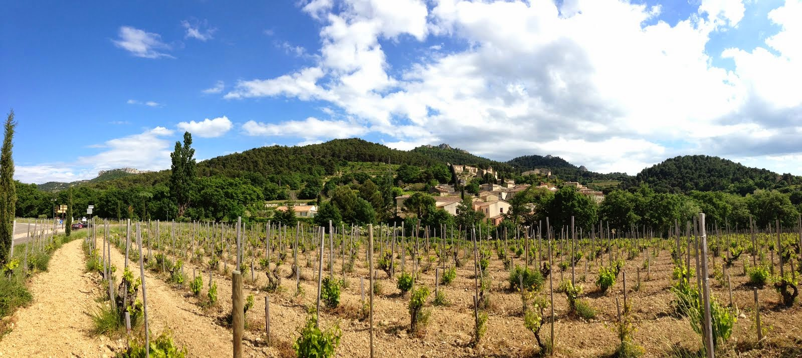 Gigondas, walking off a great lunch at L'Oustalet