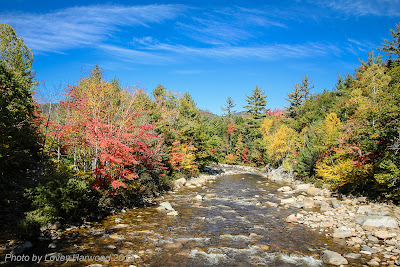 Swift River, new hampshire, fall foliage