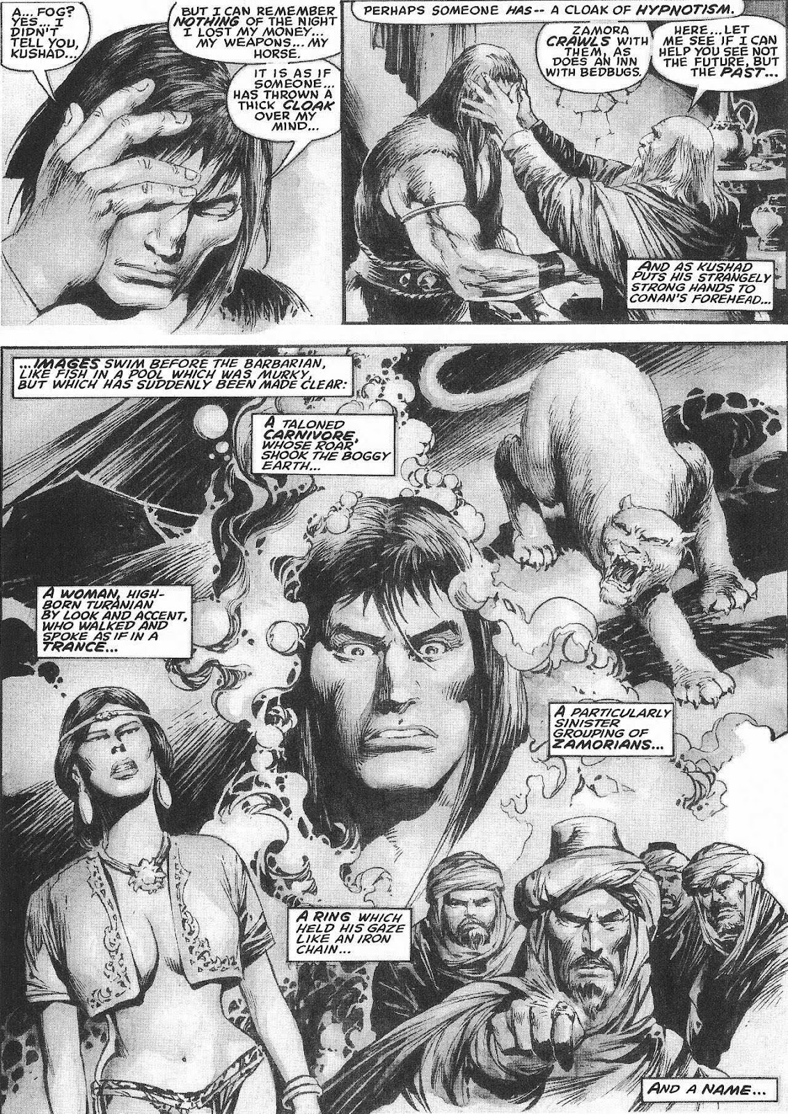 The Savage Sword Of Conan Issue #207 #208 - English 31