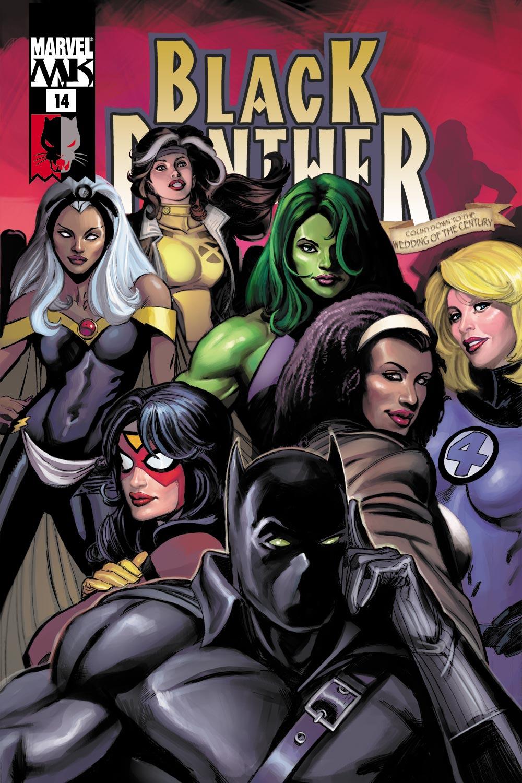 Black Panther (2005) 14 Page 1