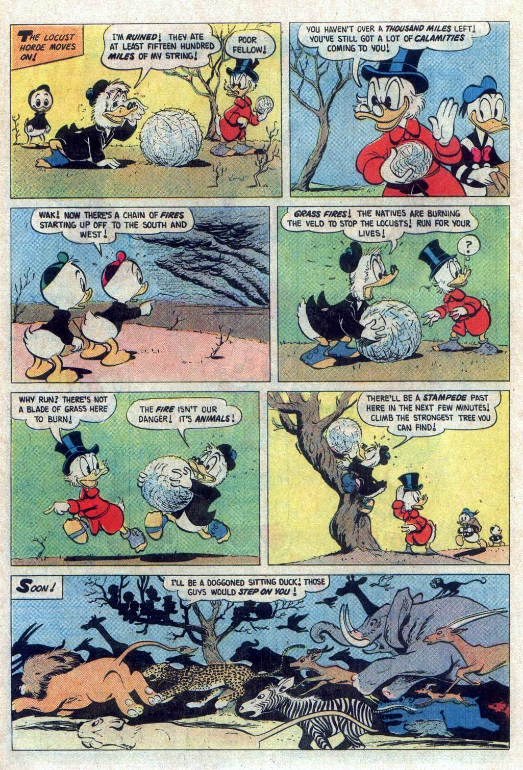Uncle Scrooge (1953) Issue #160 #160 - English 24