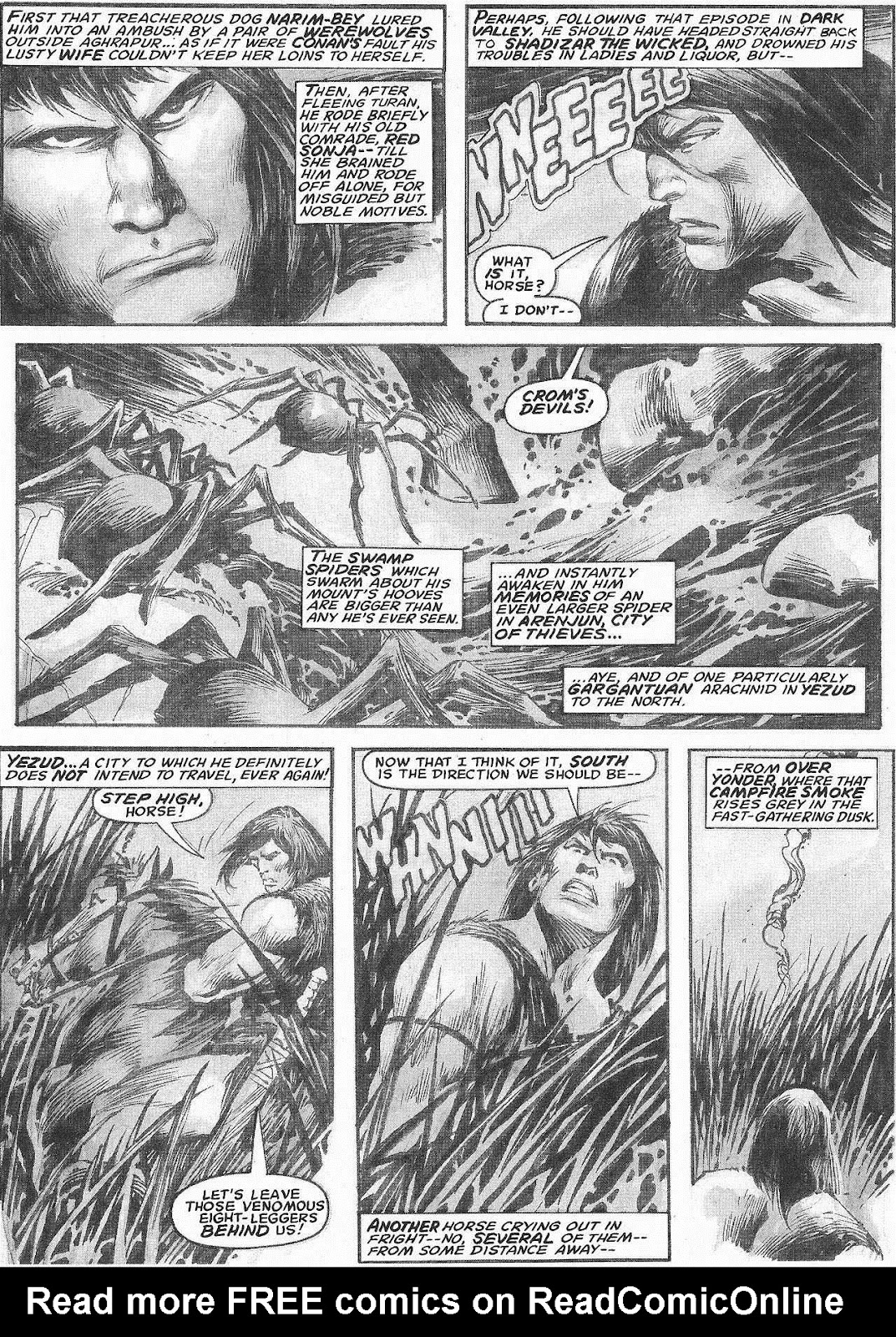The Savage Sword Of Conan Issue #207 #208 - English 11
