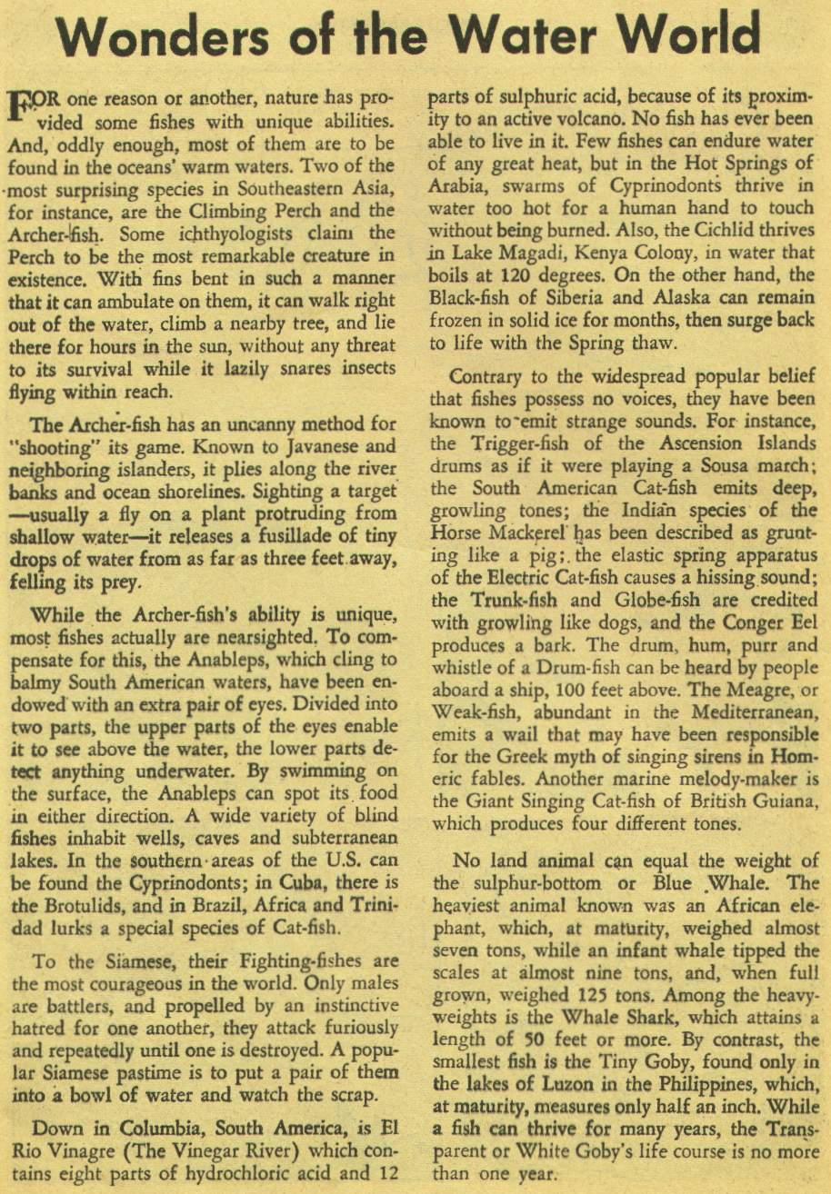 Read online Aquaman (1962) comic -  Issue #1 - 24