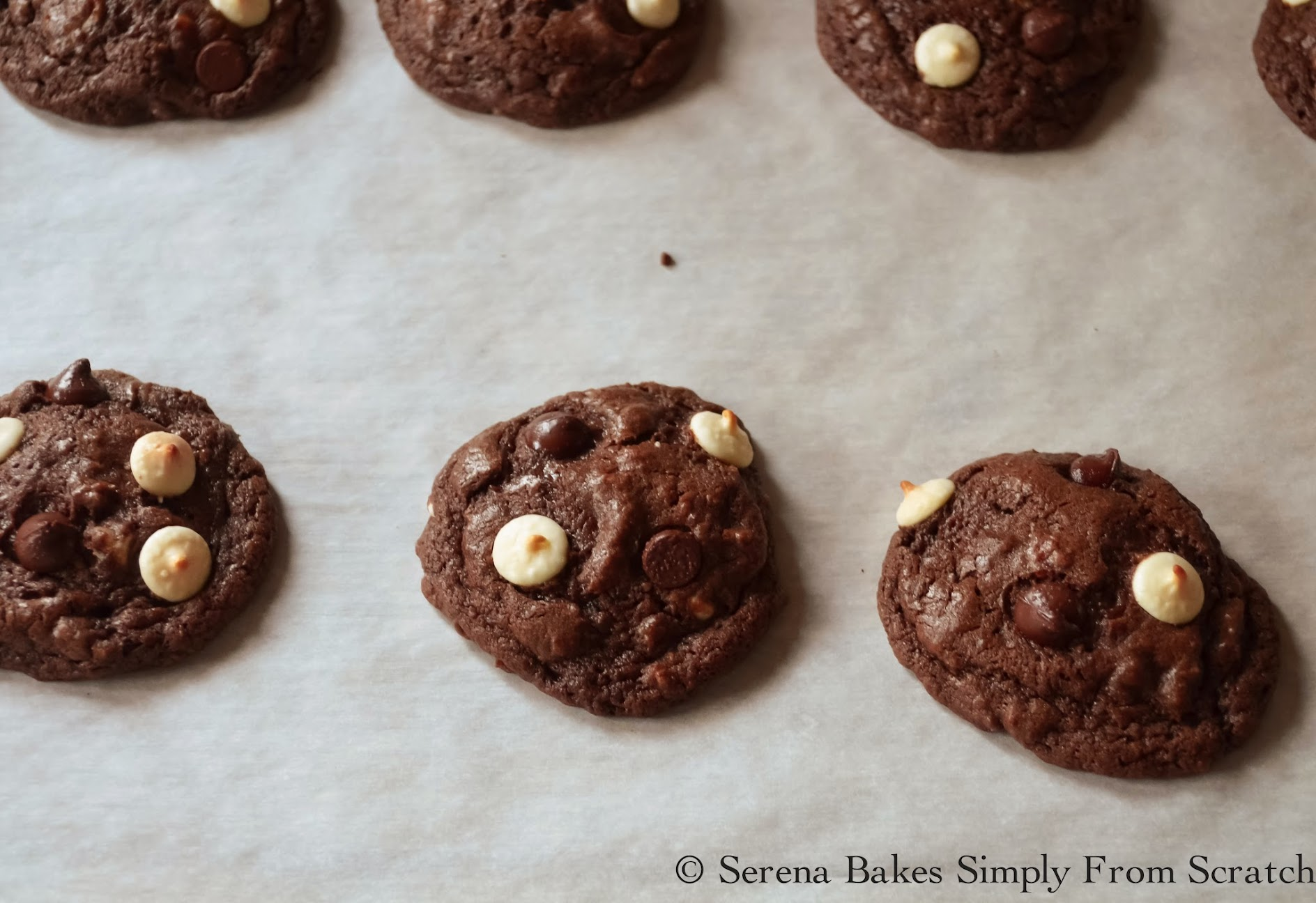 Double-Chocolate-Chip-Cookies-Bake.jpg
