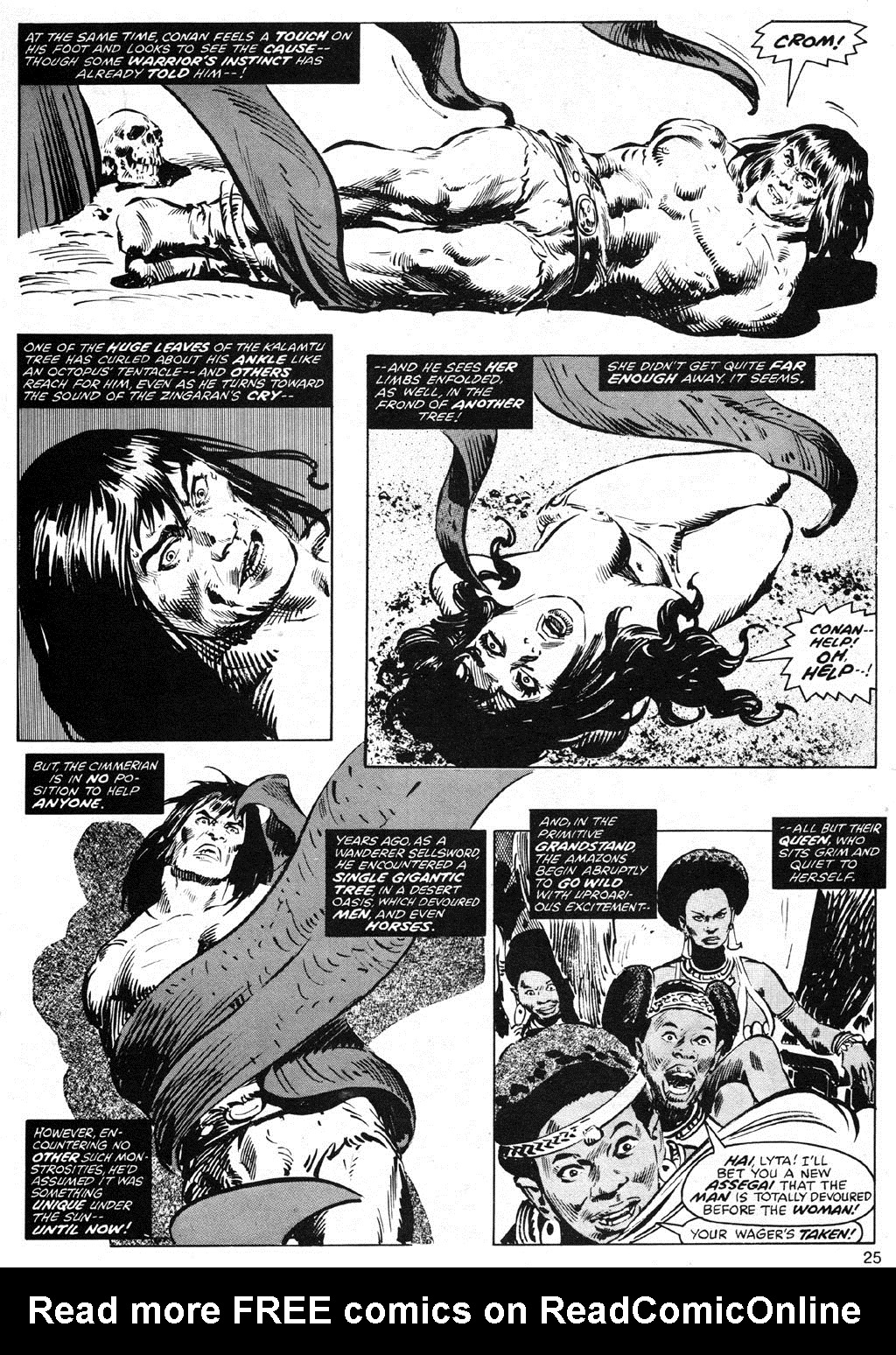 The Savage Sword Of Conan Issue #42 #43 - English 25