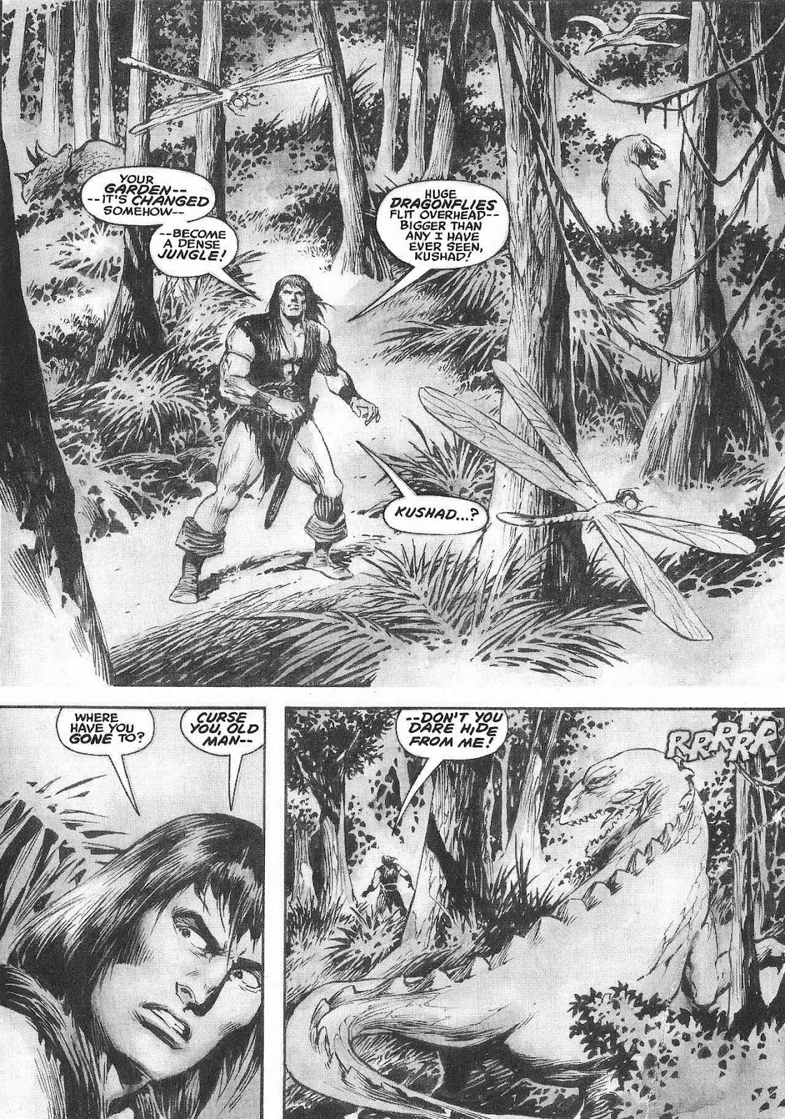 The Savage Sword Of Conan Issue #207 #208 - English 35