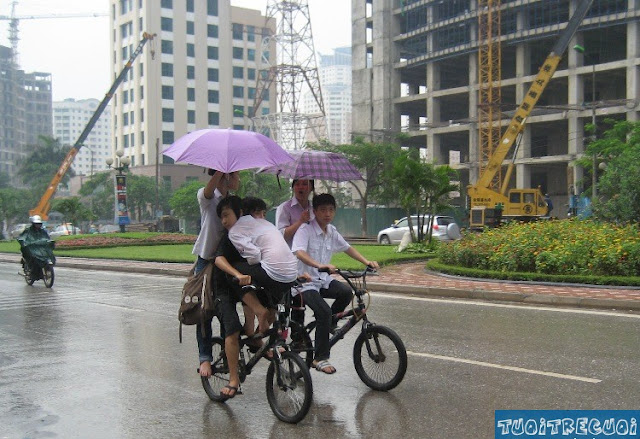 Creative Ideas to Use Bicycles