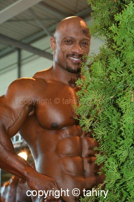 sami al-haddad nude