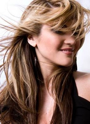 Long Highlighted Hairstyles Photo