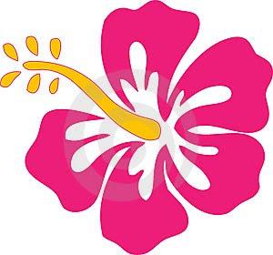 Official Symbols - Bunga Raya (Hibiscus Flower)
