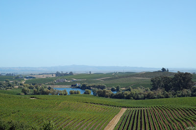 view of Napa from Artesa Winery