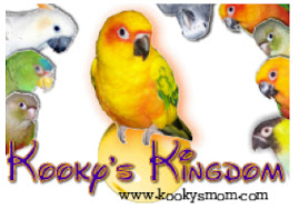 Kooky's Kingdom