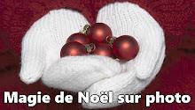 A Direcção da Comunidade Angolana de Montreal, deseja aos membros e amigos festas felizes !