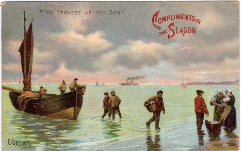 Just A Single Vintage Postcard This Evening But Definitely One Of My Favourites Its Called Harvest The Sea And Features Fishermen Returning With
