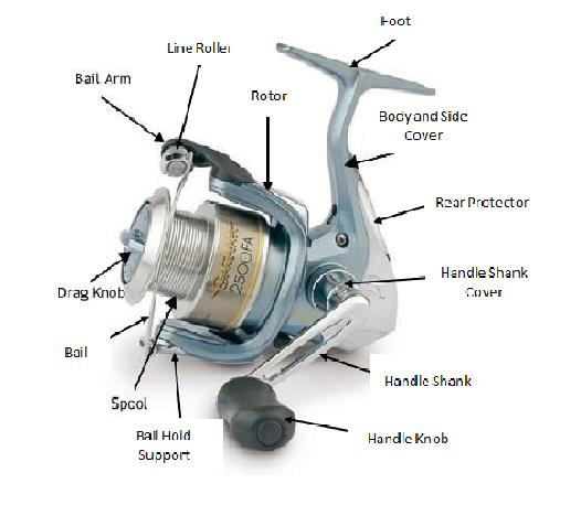 Fishing reel parts names images for Open face fishing rod