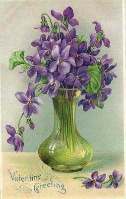 des bonsoir Violettes1