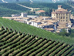 Inaugura nel Castello di Barolo, il 12 Settembre 2010, Wi-Mu: IL MUSEO INTERNAZIONALE DEL VINO