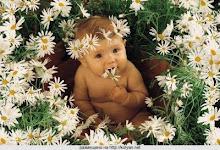 Flor de bebé.