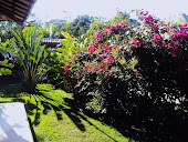 JARDIM LATERAL___Side garden