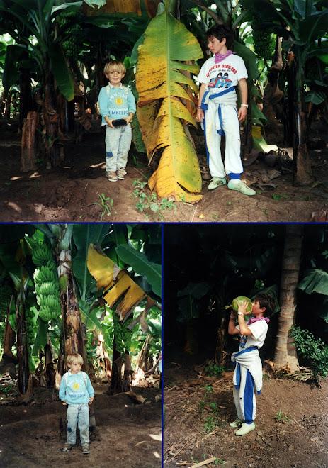 Virginie et Morgan dans la bananeraie