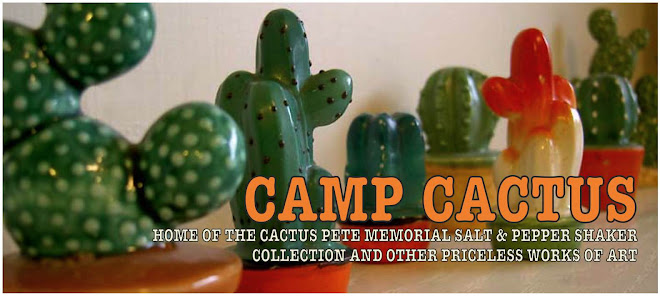 camp cactus