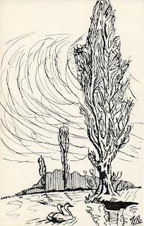 dessin à l'encre représentant un cyprès