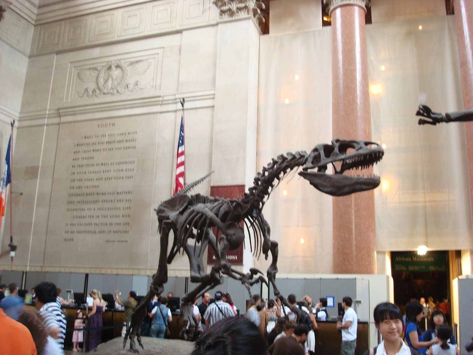 my trip to american museum of natural history