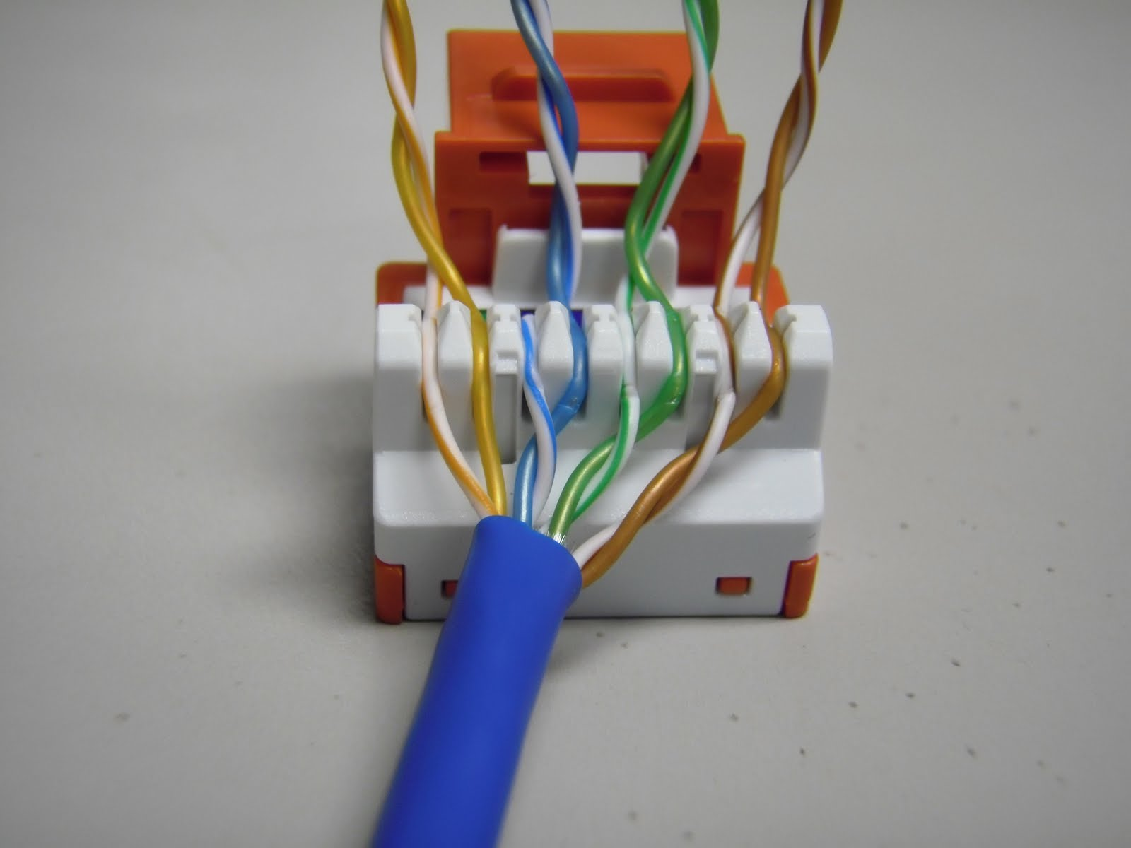 CAT5E+ER+JACK+WIRES+LACED the trench how to punch down cat5e cat6 keystone jacks cat5e faceplate wiring diagram at mifinder.co