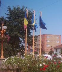Zilele orasului Sannicolau Mare