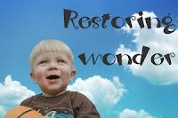 Delight Learning: Restoring Wonder