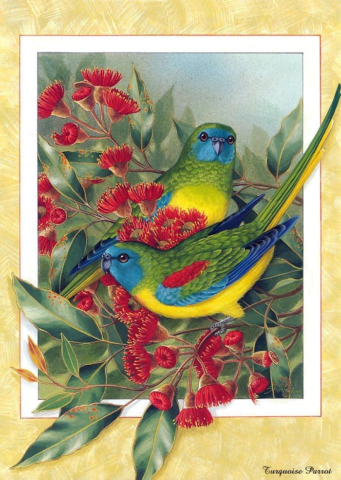 Нашла очень интересный архив с вышивками (крестом).  Он огромный, 700 мб, схемы и картинки.  Все виды птиц разделены...