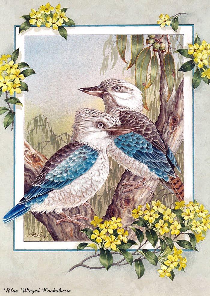 Тропические птицы.  Вышивка крестом, схемы.