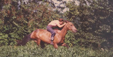 Gotta Have Horsepower!