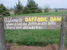 DAFFODIL DAM (226)