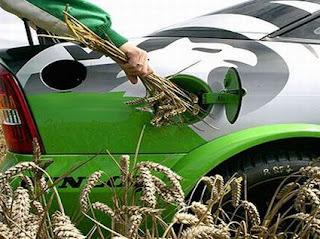 Biofuels RSPO