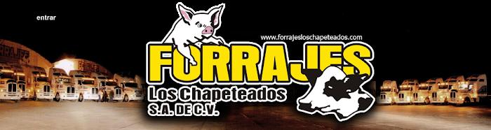 FORRAJES LOS CHAPETEADOS Y TRANSPORTES DE ANDA