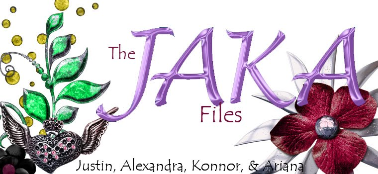 The JAKA Files