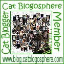 Cat's Who Blog